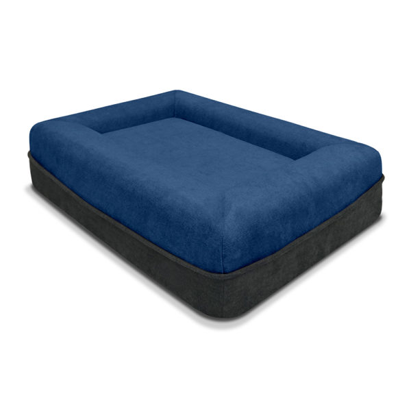 SNOOZE DOGGIE ANGLE VIEW BLUE