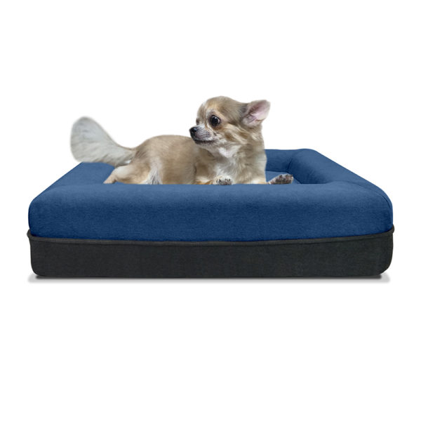 SNOOZE DOGGIE WITH DOG VIEW BLUE